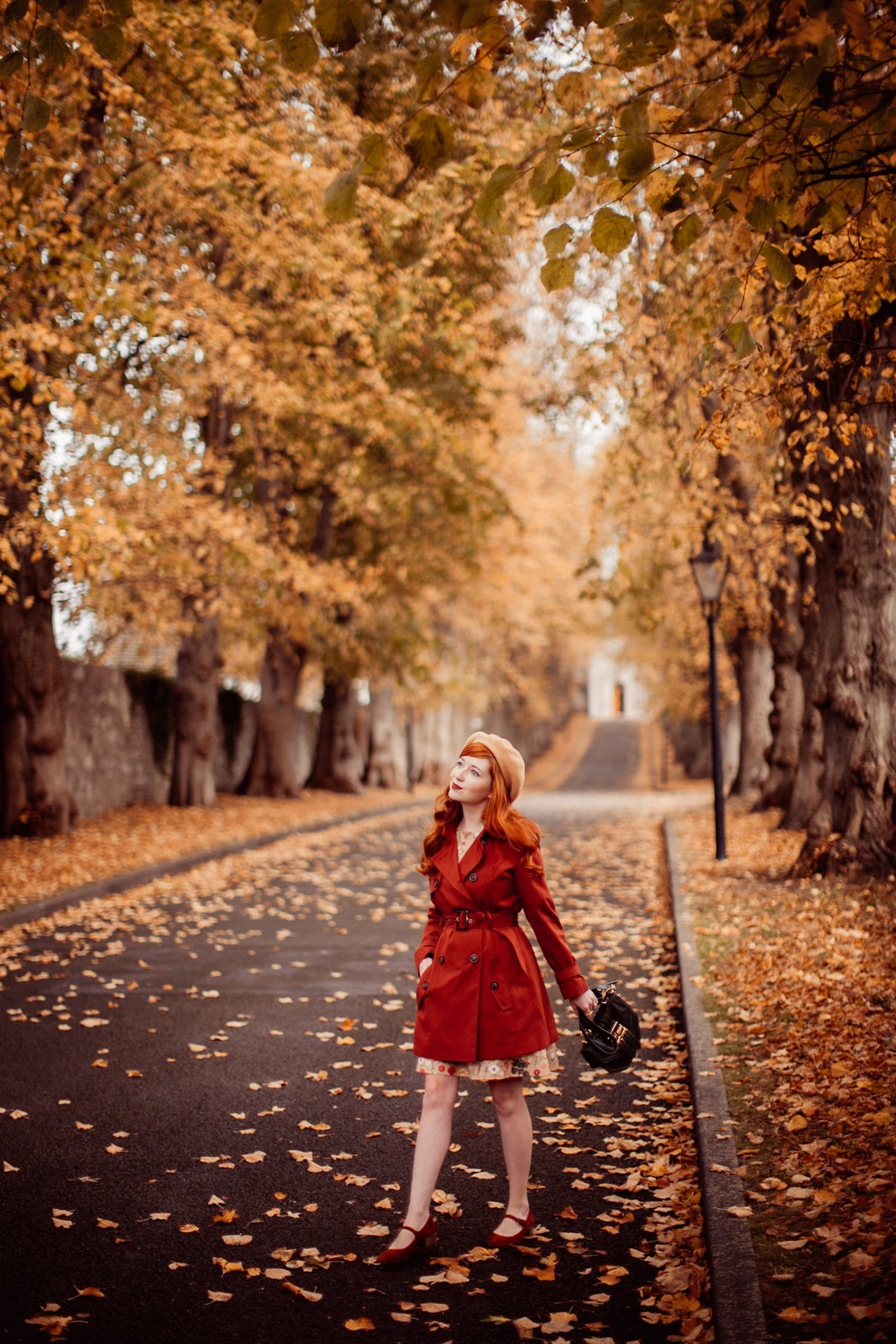 autumn path-9
