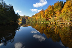 Automne sur l'étang du Donnenbach - Photo of Rexingen