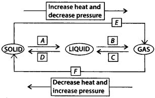 NCERT Solutions for Class 9 Science Chapter 1 Matter in Our Surroundings 1