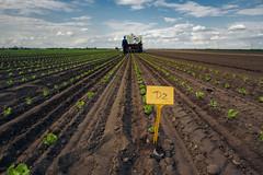 GLOBAL 2000 PestizidReduktionsProgramm