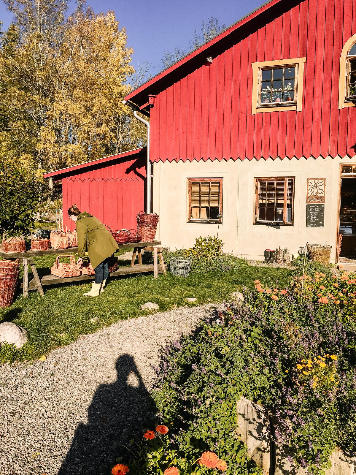 Ändebols gård IMG_8865-2