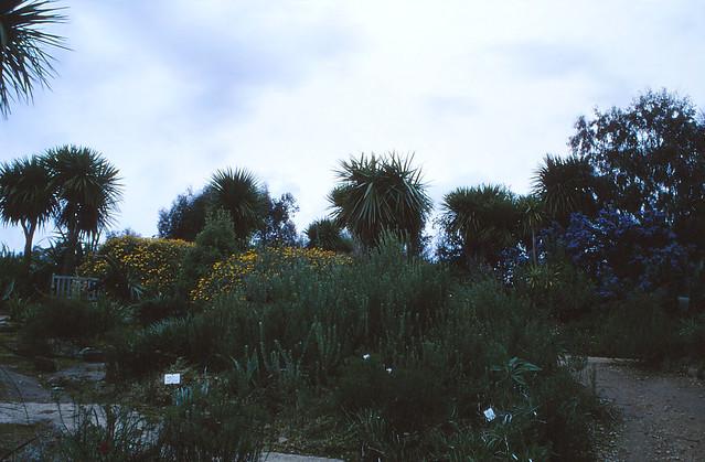 The Exotic Garden of Roscoff