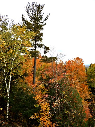 mypics autumn fall sanctuairenotredamedelourdes sanctuary romancatholic rigaud quebec canada