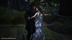 Moonlight Dance..