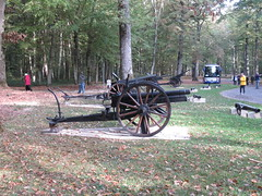Artillery in Belleau Wood.