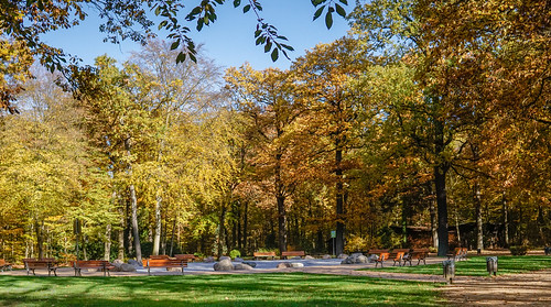 freizeitpark tannenwald