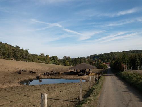 Wanderung von Pansfelde nach Stangerode und zurück
