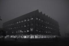 2018-11-08 Malmö Hubhult i dimma