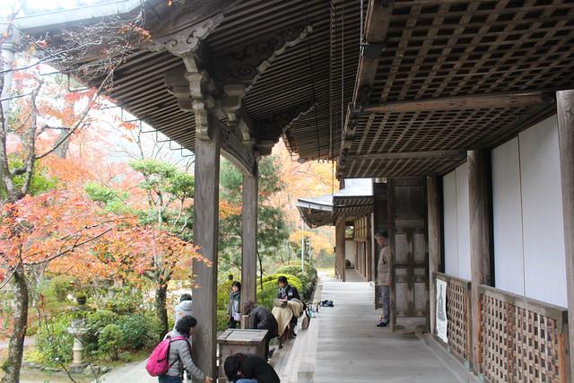 saimyouji-koyo029