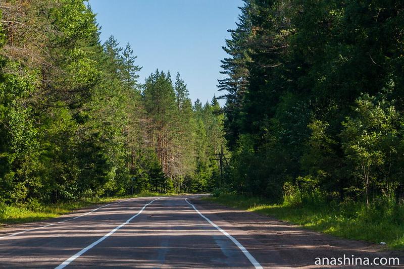 Дорога вдоль восточного берега Ладожского озера, Карелия