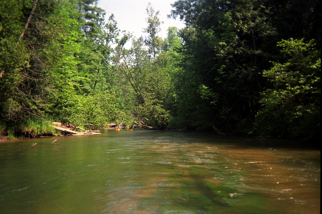 Canoers on the Manistee River | Canoers paddle the Manistee