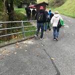Hornusserreisli Marbachegg 2018