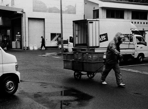 Rainy Day, Fukaura Fish Market, Ehime, Japan