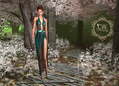 LuceMia - Celestina's Weddings & EMO-tions