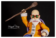 Review 121 - Muten Roshi [S.H.Figuarts] 44195754775_af40714503_m