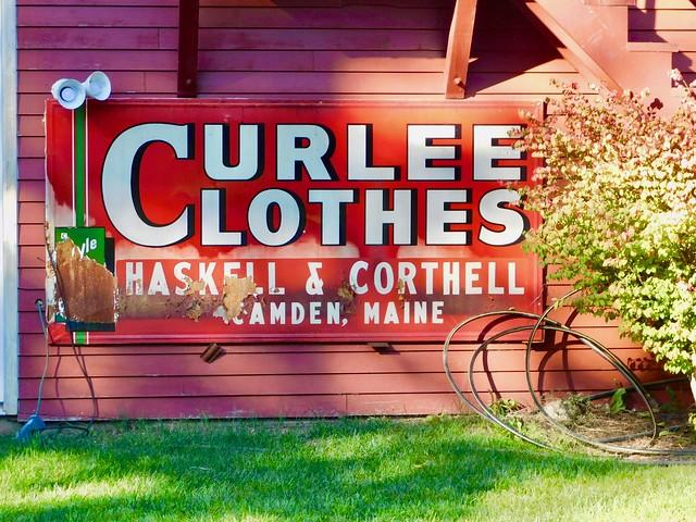 Curlee Clothes, Nikon COOLPIX B500