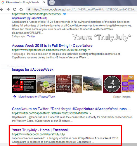 The power of the #hashtag: Google displays the #AccessWeek hashtag around the internet in its search results.