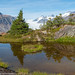 Landscape above the parking lot for Salmon Glacier by Alaskan Dude