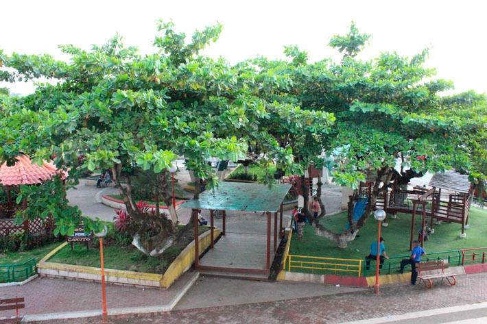 Parroquia Canuto - Parque Los Pericos