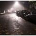 2018-10-15 - Mist on the avenue