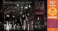 50% Off in E.V.E Waving Bioluminescent Fungus Fatpack / Sale-A-Palooza