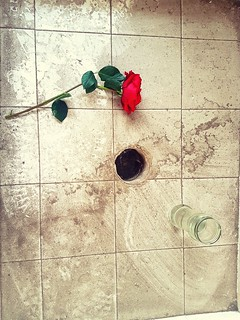 "After the Apocalypse, a rose abandoned for a lover left behind. ""This place"" she thought ""used to be beautiful"". This rose will never feel human skin again."