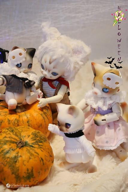 ✰ Ma famille de kitsune (p. 20) - Page 18 30716832037_f43b9f86b0_z