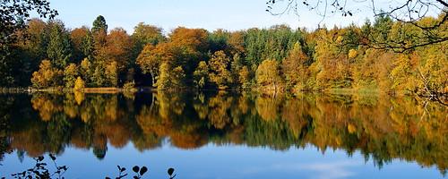 sø lake landskab landscape sky cloud himmel slåensø lakeslåen slåen silkeborg jylland skov forest efterår fall tree træ løv leaf refleks reflex autumn