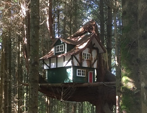 A house in the trees