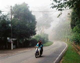 a misty morning in Janda Baik