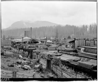 Stockyards and sawmill at Barneston, 1911