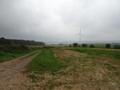 Hermin le  parc éolien  (6)