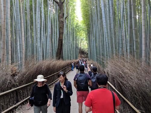 Japan Trip 2018 1047