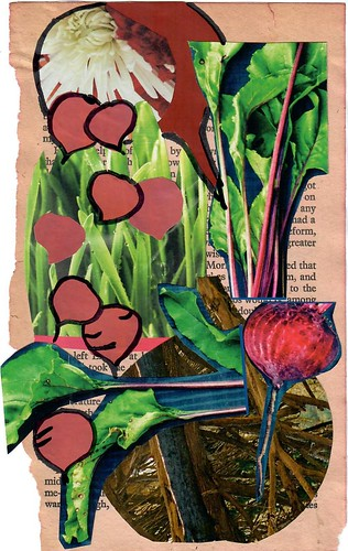 Beetroot thecollagegardenOct2018