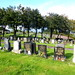 Port Glasgow Cemetery Woodhill (351)