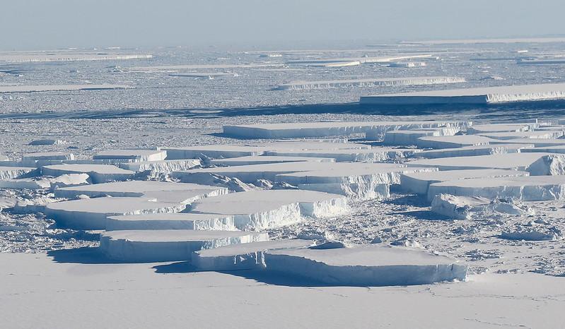 Larsen C tabular icebergs 2