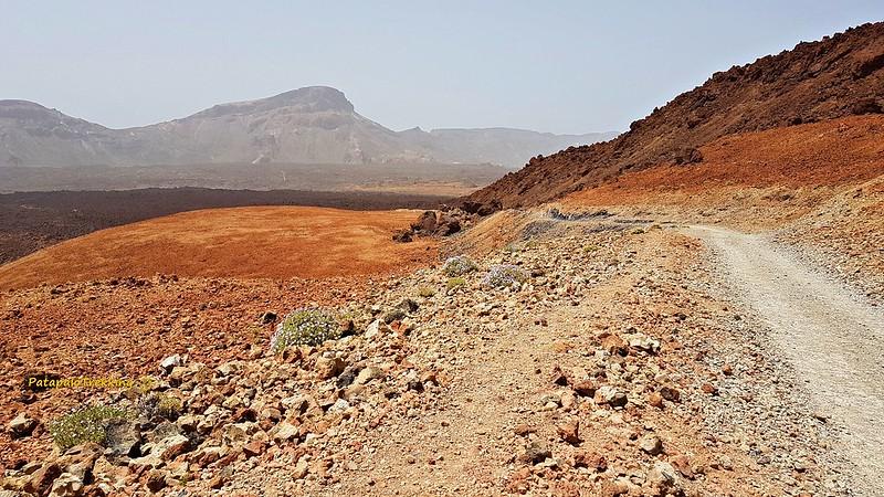 26 Pared de Las cañadas del Teide