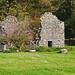 Tumbled Down Barn - Cumbria.