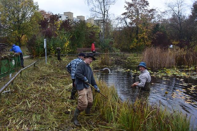 Starke Männer im Teich (©NVVB)