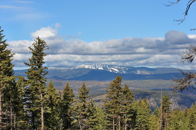 Silver Star Ski Mountain looking from Beetle Creek