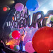 2018_11_12 The Flaming Lips - Rockhal