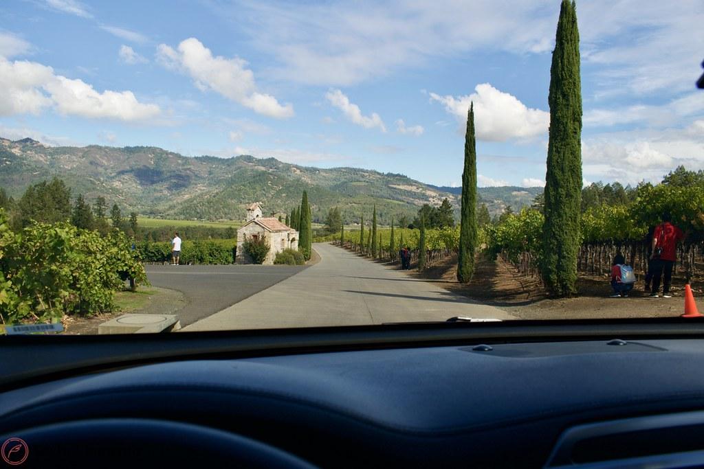 driving-down-the-castello-di-amorosa-road