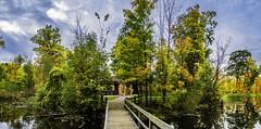 Concord Woods_20181030_20