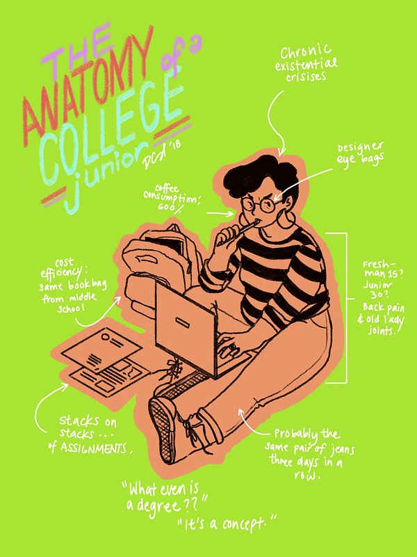 The Anatomy of a College Junior