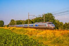 26 juillet 2013 TGV A 356 Train 8518 Toulouse -> Paris Le Pian-sur-Garonne (33) - Photo of Sainte-Foy-la-Longue