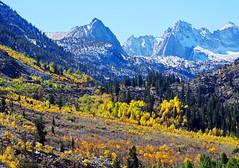 Autumn in Bishop Creek Canyon, CA 10-8-18
