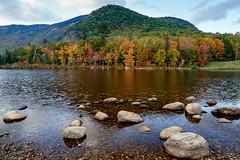 Basin Brook Reservoir