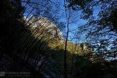 SENTIERI FLO' e FRASSATI (Gruppo monte Catria)