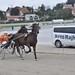 Kasaške dirke v Komendi 23.09.2018 Prva dirka