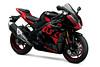 Suzuki GSX-R 1000 R 2020 - 13